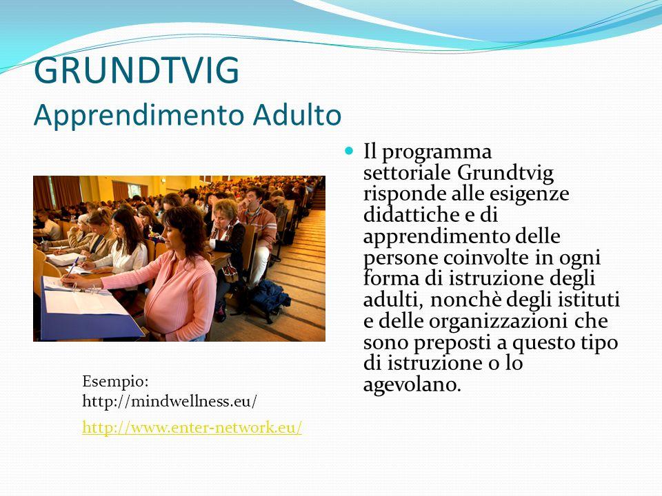 GRUNDTVIG Apprendimento Adulto Il programma settoriale Grundtvig risponde alle esigenze didattiche e di apprendimento delle persone coinvolte in ogni forma di istruzione degli adulti, nonchè degli istituti e delle organizzazioni che sono preposti a questo tipo di istruzione o lo agevolano.