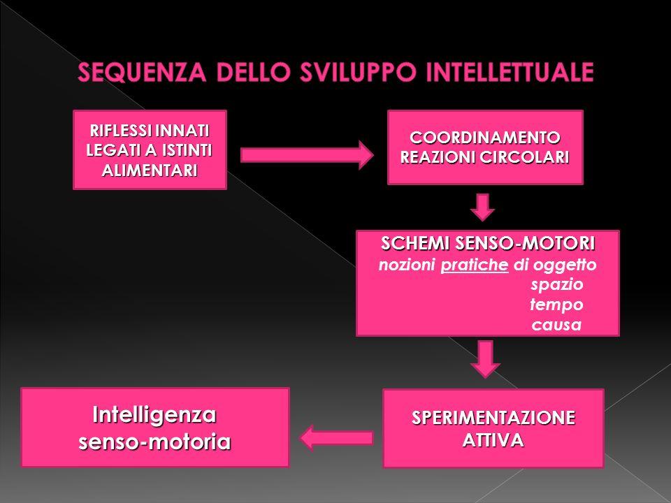 RIFLESSI INNATI LEGATI A ISTINTI ALIMENTARI COORDINAMENTO REAZIONI CIRCOLARI SCHEMI SENSO-MOTORI nozioni pratiche di oggetto spazio tempo causa Intelligenzasenso-motoria SPERIMENTAZIONE ATTIVA