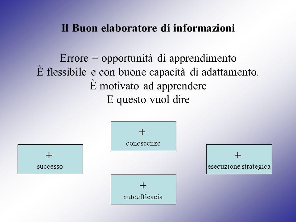 Il Buon elaboratore di informazioni Errore = opportunità di apprendimento È flessibile e con buone capacità di adattamento. È motivato ad apprendere E