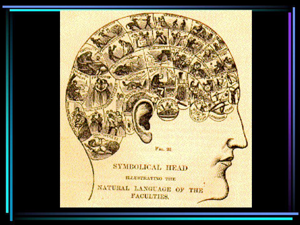 Cervello Coscienza Mente Core consciousness Extended consciousness Damasio, 1999