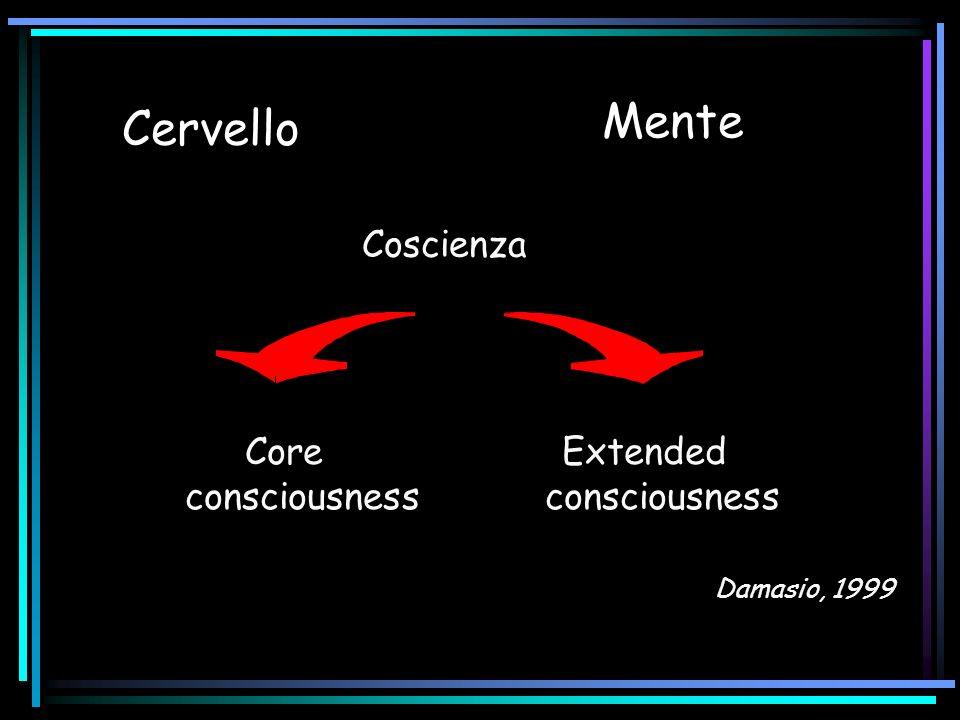 Area visiva 5 o MT V5 analizza informazione circa il movimento e la profondita.