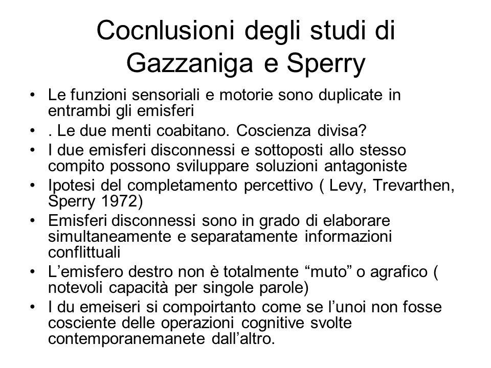 Cocnlusioni degli studi di Gazzaniga e Sperry Le funzioni sensoriali e motorie sono duplicate in entrambi gli emisferi. Le due menti coabitano. Coscie