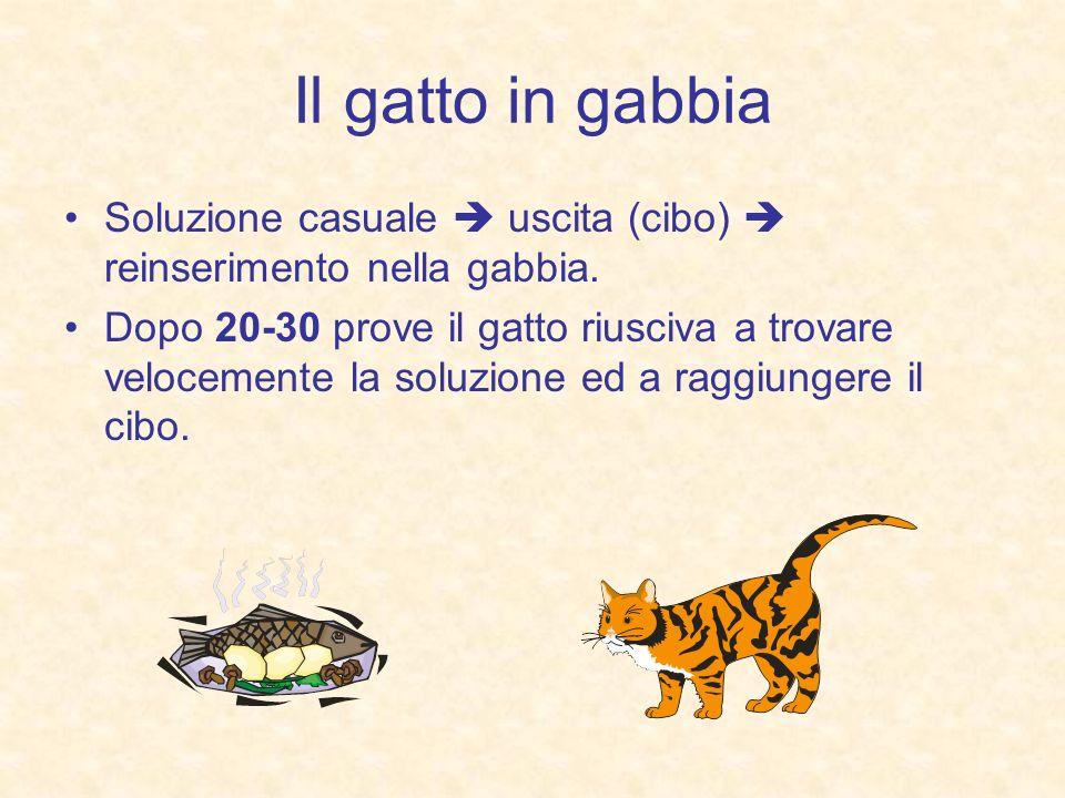 Il gatto in gabbia Soluzione casuale uscita (cibo) reinserimento nella gabbia. Dopo 20-30 prove il gatto riusciva a trovare velocemente la soluzione e