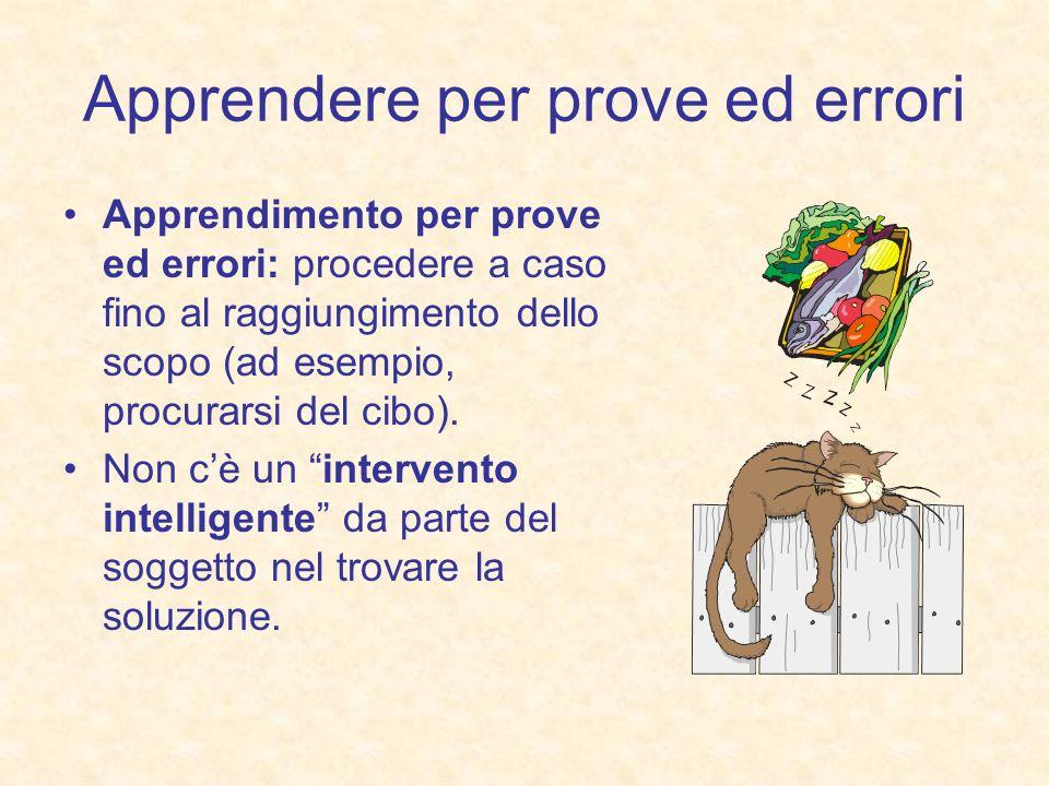 Apprendere per prove ed errori Apprendimento per prove ed errori: procedere a caso fino al raggiungimento dello scopo (ad esempio, procurarsi del cibo