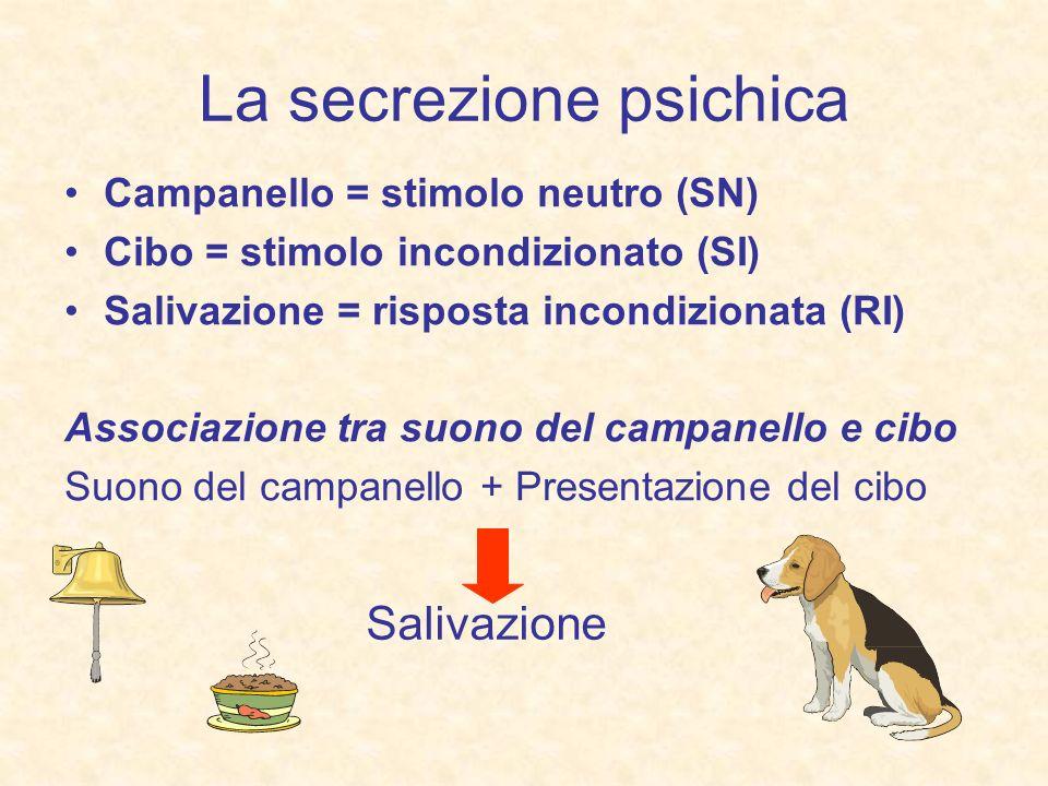 La secrezione psichica Campanello = stimolo neutro (SN) Cibo = stimolo incondizionato (SI) Salivazione = risposta incondizionata (RI) Associazione tra