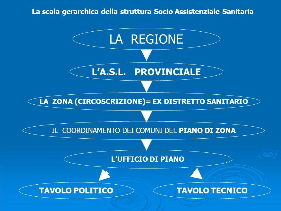 La scala gerarchica della struttura Socio Assistenziale Sanitaria LA REGIONE LA.S.L.