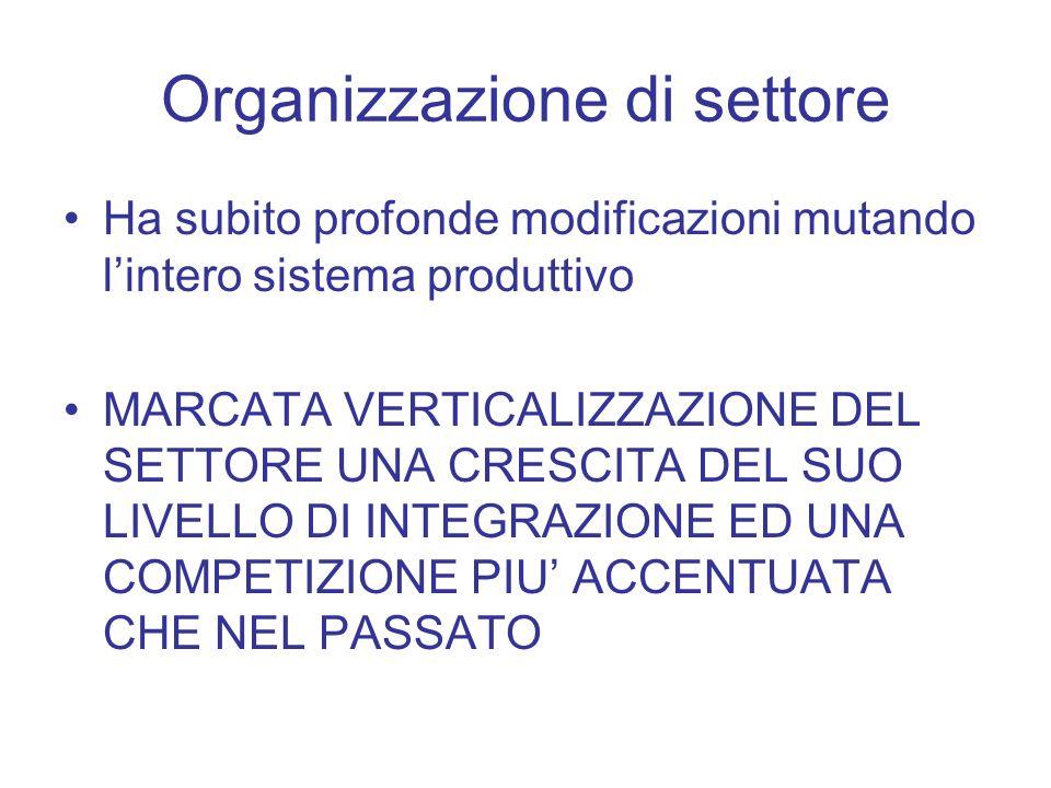 Organizzazione di settore Ha subito profonde modificazioni mutando lintero sistema produttivo MARCATA VERTICALIZZAZIONE DEL SETTORE UNA CRESCITA DEL S
