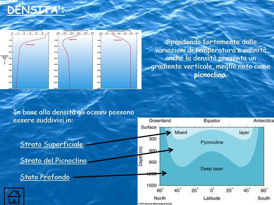 In base alla densità gli oceani possono essere suddivisi in: DENSITA: dipendendo fortemente dalle variazioni di temperatura e salinità anche la densit
