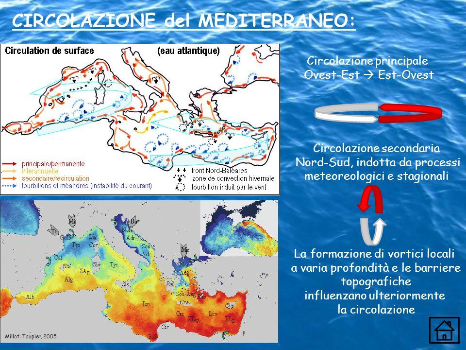 Circolazione principale Ovest-Est Est-Ovest Circolazione secondaria Nord-Sud, indotta da processi meteoreologici e stagionali La formazione di vortici