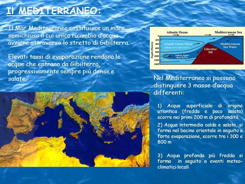 Il MEDITERRANEO: Il Mar Mediterraneo costituisce un mare semichiuso il cui unico ricambio dacqua avviene attraverso lo stretto di Gibilterra. Elevati