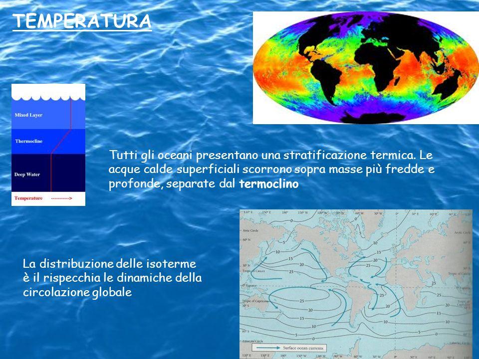 TEMPERATURA Tutti gli oceani presentano una stratificazione termica. Le acque calde superficiali scorrono sopra masse più fredde e profonde, separate
