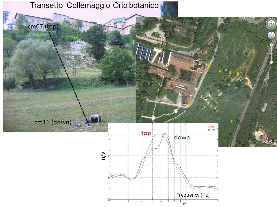 Frequency (Hz) H/V cm11 (down) cm07 (top) Transetto Collemaggio-Orto botanico top down