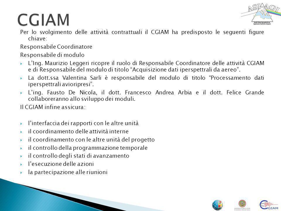 Per lo svolgimento delle attività contrattuali il CGIAM ha predisposto le seguenti figure chiave: Responsabile Coordinatore Responsabile di modulo LIn