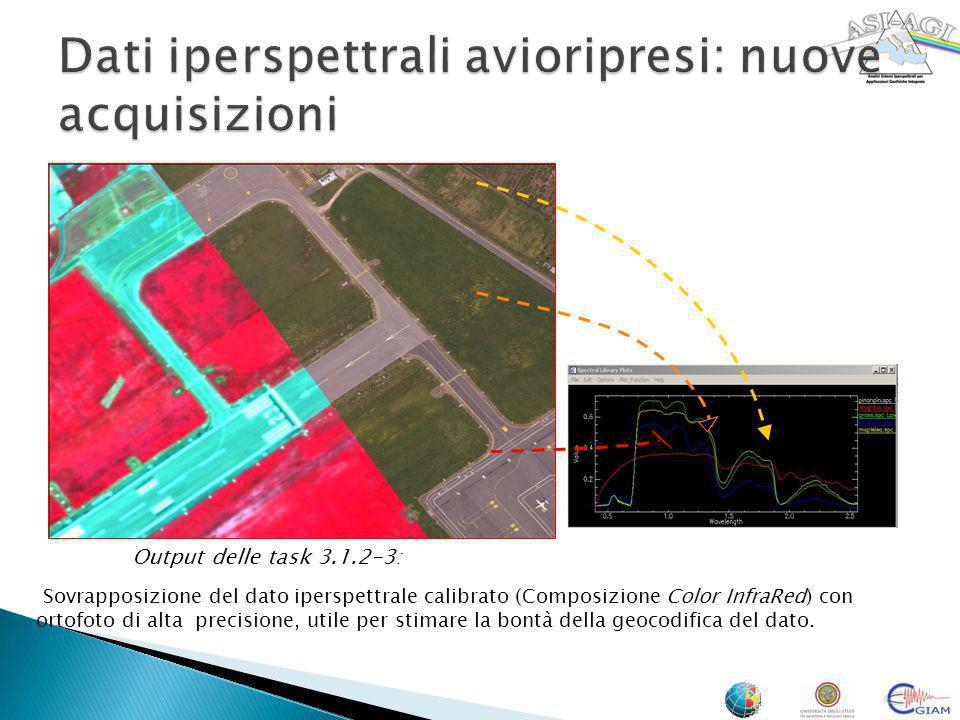 Output delle task 3.1.2-3: Sovrapposizione del dato iperspettrale calibrato (Composizione Color InfraRed) con ortofoto di alta precisione, utile per s