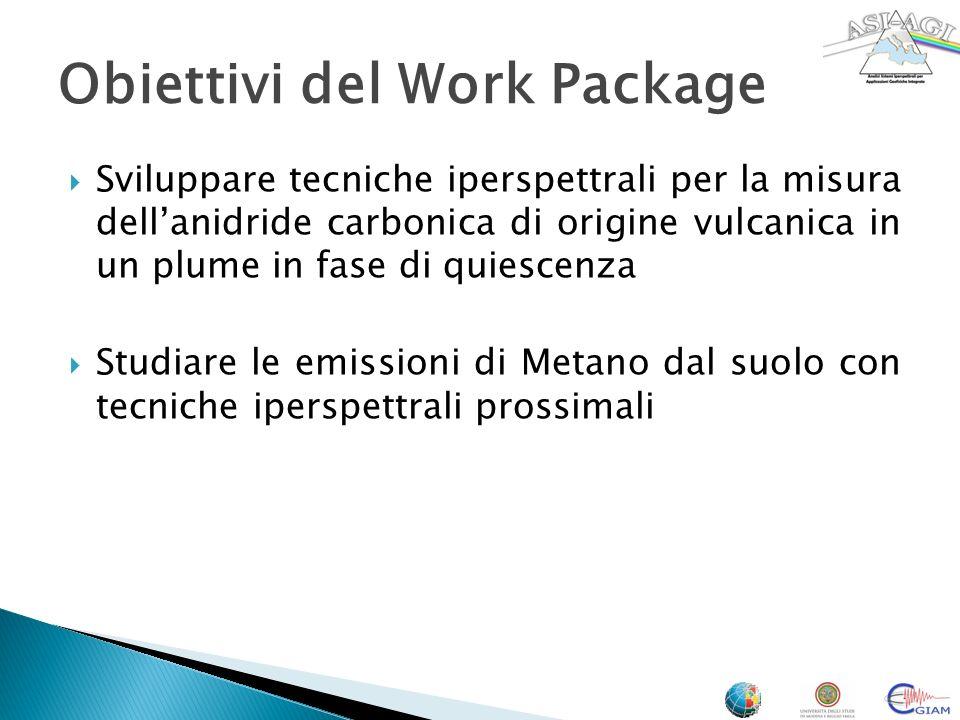 Sviluppare tecniche iperspettrali per la misura dellanidride carbonica di origine vulcanica in un plume in fase di quiescenza Studiare le emissioni di Metano dal suolo con tecniche iperspettrali prossimali Obiettivi del Work Package