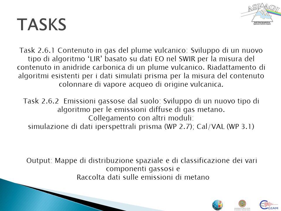 Stato dellarte delle tecniche di misura di XCO2 Analisi e revisione degli algoritmi pre-esistenti delle tecniche iperspettrali Individuazione dei dataset disponibili Requisiti stumentali per un plume di degassamneto Implementazione dellalgoritmo CIBRW considerando il contributo in emissone in un plume esplosivo Applicazione algoritmo CIBRW a dataset aerei MIVIS 1997 su Stromboli Individuazione delle bande di assorbimento CH4 Campagna di Misure aerea e di terra Attività svolte