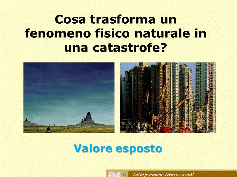 Cosa trasforma un fenomeno fisico naturale in una catastrofe? Valore esposto