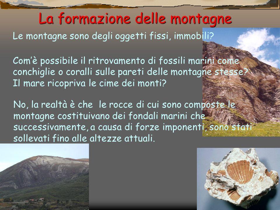 Le montagne sono degli oggetti fissi, immobili? Comè possibile il ritrovamento di fossili marini come conchiglie o coralli sulle pareti delle montagne