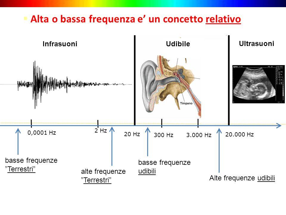 20 Hz 3.000 Hz Alte frequenze udibili Infrasuoni Ultrasuoni Alta o bassa frequenza e un concetto relativo 20.000 Hz 300 Hz 2 Hz basse frequenze udibil