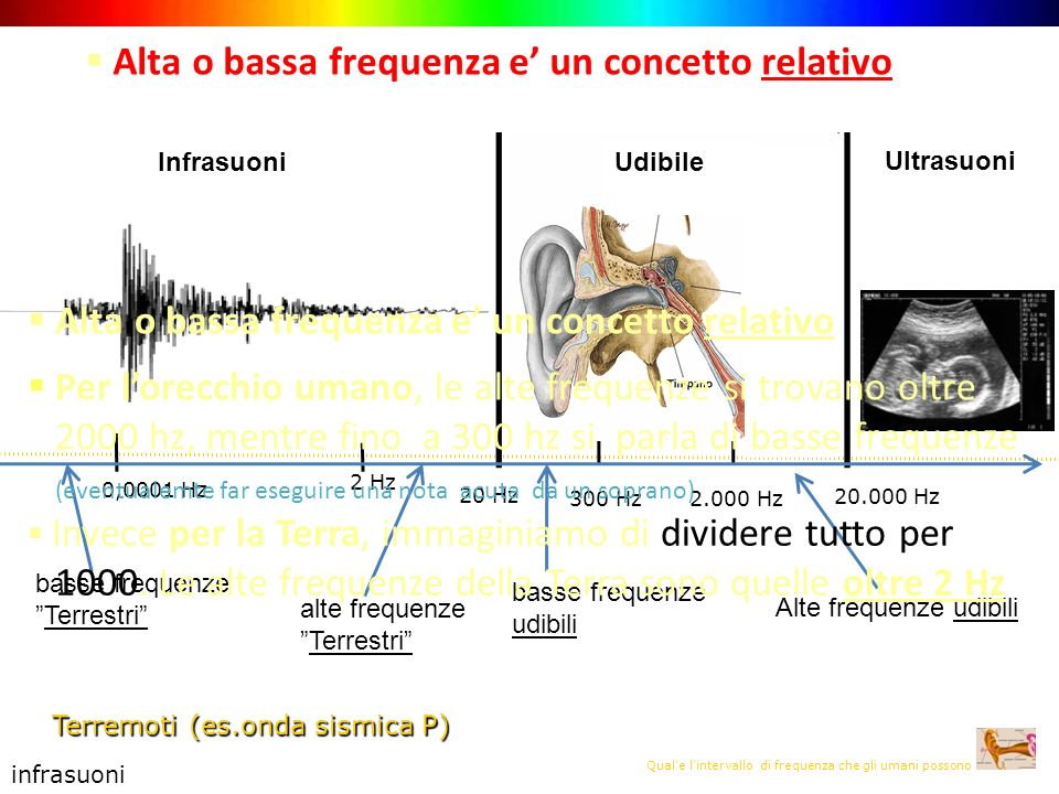 Quale lintervallo di frequenza che gli umani possono udire ? 20 Hz 2.000 Hz Alte frequenze udibili infrasuoni Terremoti (es.onda sismica P) Infrasuoni