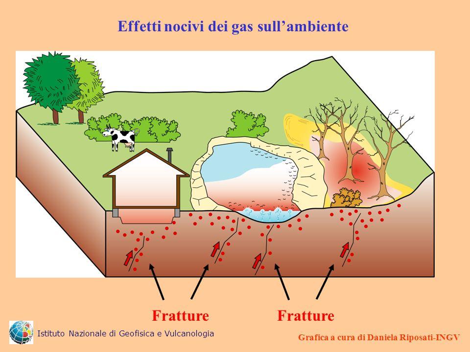 Effetti nocivi dei gas sullambiente Grafica a cura di Daniela Riposati-INGV Fratture Istituto Nazionale di Geofisica e Vulcanologia
