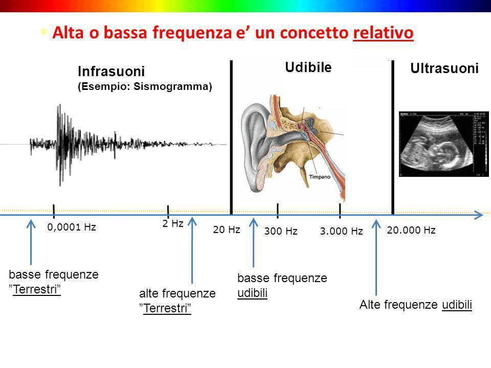 20 Hz 3.000 Hz Alte frequenze udibili Infrasuoni (Esempio: Sismogramma) Ultrasuoni Alta o bassa frequenza e un concetto relativo 20.000 Hz 300 Hz 2 Hz