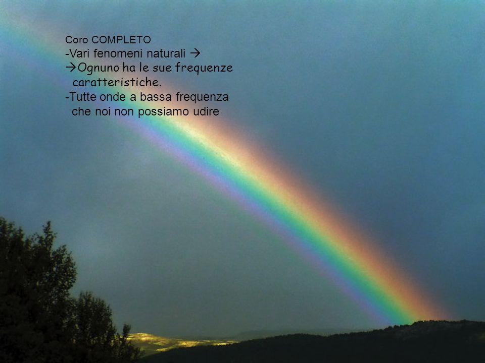 Coro COMPLETO -Vari fenomeni naturali Ognuno ha le sue frequenze caratteristiche. -Tutte onde a bassa frequenza che noi non possiamo udire