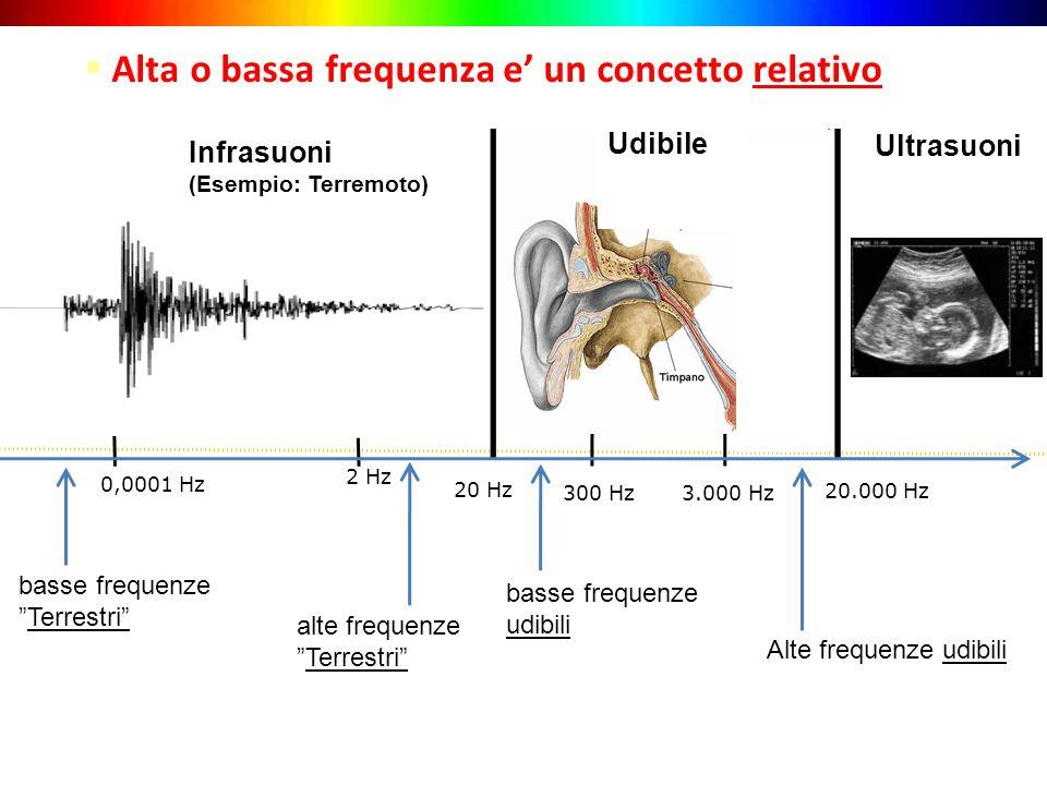 20 Hz 3.000 Hz Alte frequenze udibili Infrasuoni (Esempio: Terremoto) Ultrasuoni Alta o bassa frequenza e un concetto relativo 20.000 Hz 300 Hz 2 Hz b