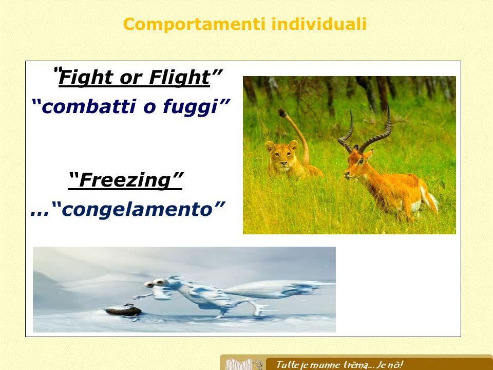 Fight or Flight combatti o fuggi Freezing …congelamento Comportamenti individuali