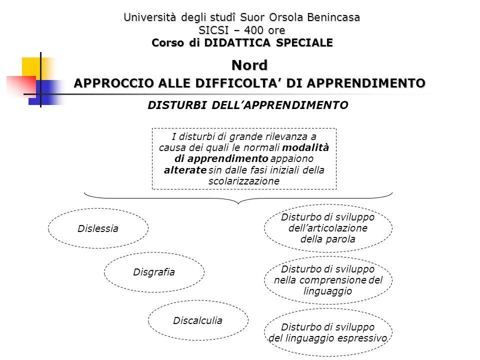 Università degli studî Suor Orsola Benincasa SICSI – 400 ore Corso di DIDATTICA SPECIALE DISTURBI DELLAPPRENDIMENTO I disturbi di grande rilevanza a c