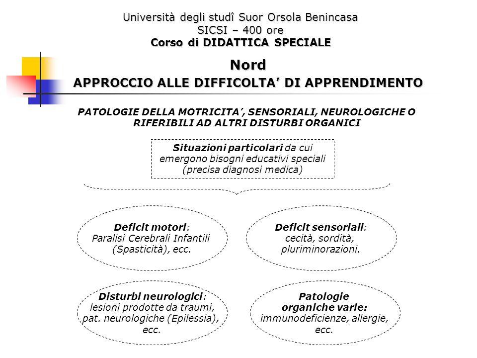 Università degli studî Suor Orsola Benincasa SICSI – 400 ore Corso di DIDATTICA SPECIALE Nord APPROCCIO ALLE DIFFICOLTA DI APPRENDIMENTO PATOLOGIE DEL