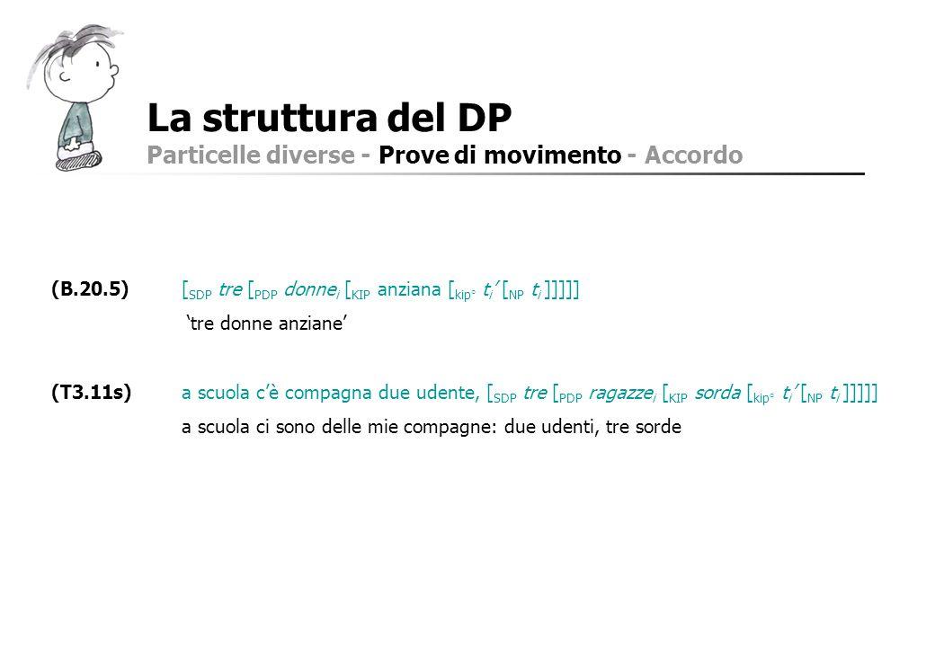 La struttura del DP Particelle diverse - Prove di movimento - Accordo (B.20.5)[ SDP tre [ PDP donne i [ KIP anziana [ kip° t i [ NP t i ]]]]] tre donn
