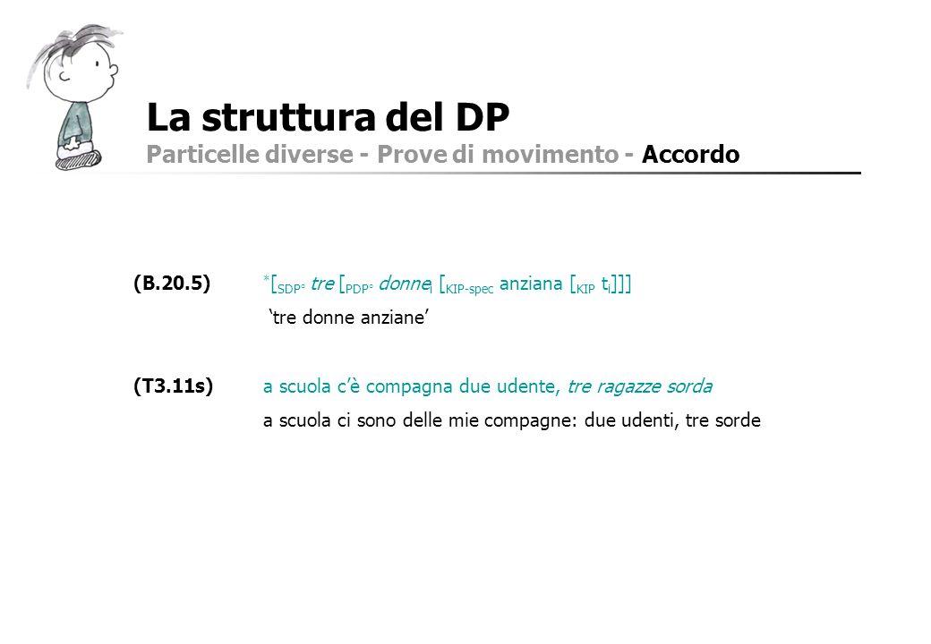 La struttura del DP Particelle diverse - Prove di movimento - Accordo (B.20.5) * [ SDP° tre [ PDP° donne i [ KIP-spec anziana [ KIP t i ]]] tre donne