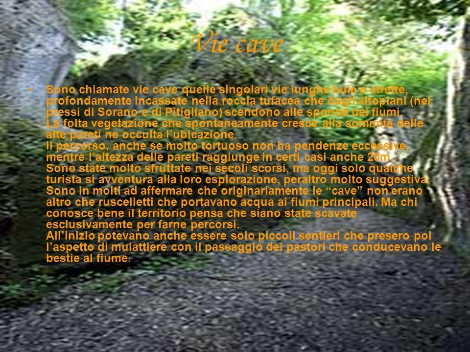 Sono chiamate vie cave quelle singolari vie lunghe buie e strette, profondamente incassate nella roccia tufacea che dagli altopiani (nei pressi di Sorano e di Pitigliano) scendono alle sponde dei fiumi.