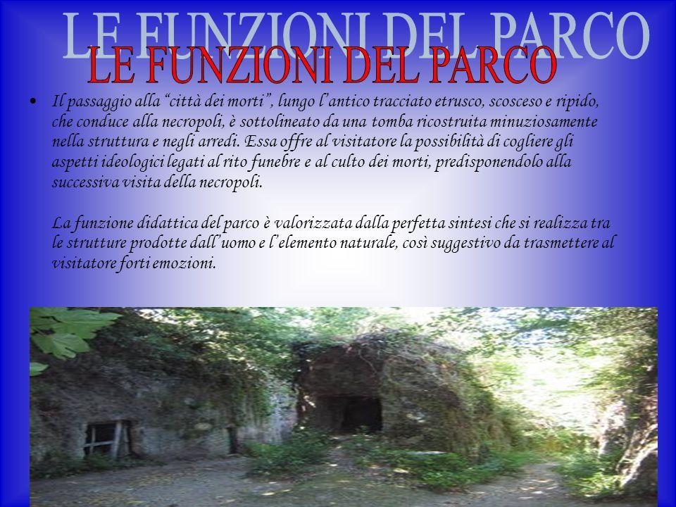 Il passaggio alla città dei morti, lungo lantico tracciato etrusco, scosceso e ripido, che conduce alla necropoli, è sottolineato da una tomba ricostr