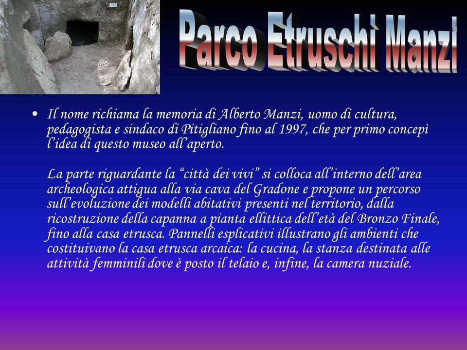Il nome richiama la memoria di Alberto Manzi, uomo di cultura, pedagogista e sindaco di Pitigliano fino al 1997, che per primo concepì lidea di questo