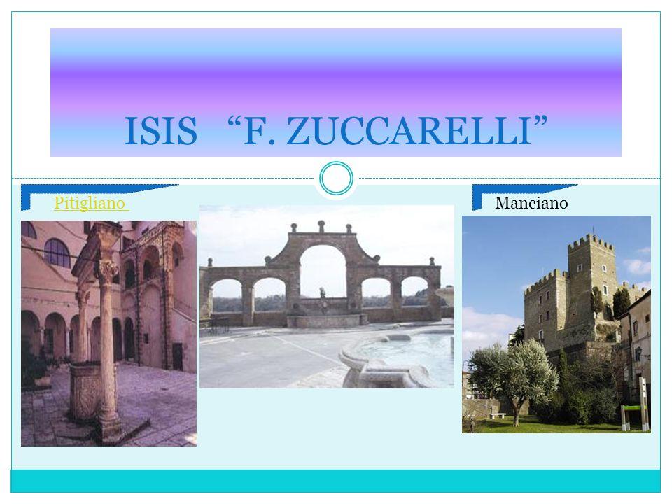 PIANO DELLOFFERTA FORMATIVA A.S. 2010/2011 ISIS F. ZUCCARELLI PitiglianoManciano