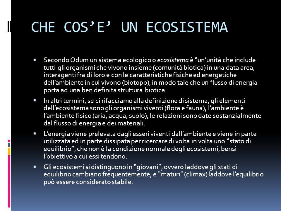 CHE COSE UN ECOSISTEMA Secondo Odum un sistema ecologico o ecosistema è ununità che include tutti gli organismi che vivono insieme (comunità biotica)