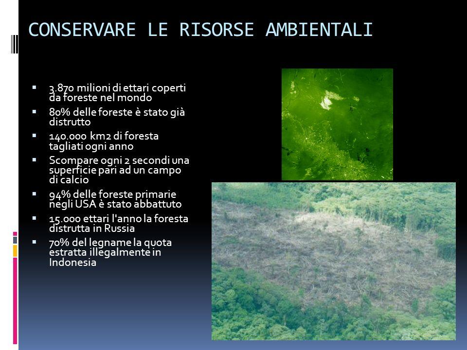 CONSERVARE LE RISORSE AMBIENTALI 3.870 milioni di ettari coperti da foreste nel mondo 80% delle foreste è stato già distrutto 140.000 km2 di foresta t