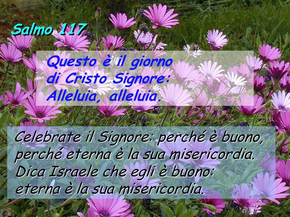 Salmo 117 Questo è il giorno di Cristo Signore: Alleluia, alleluia.