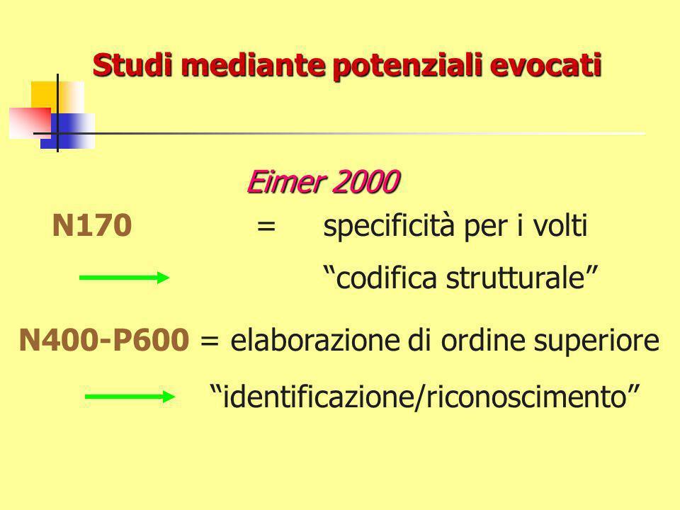 Studi mediante potenziali evocati Eimer 2000 N170= specificità per i volti codifica strutturale N400-P600 = elaborazione di ordine superiore identificazione/riconoscimento