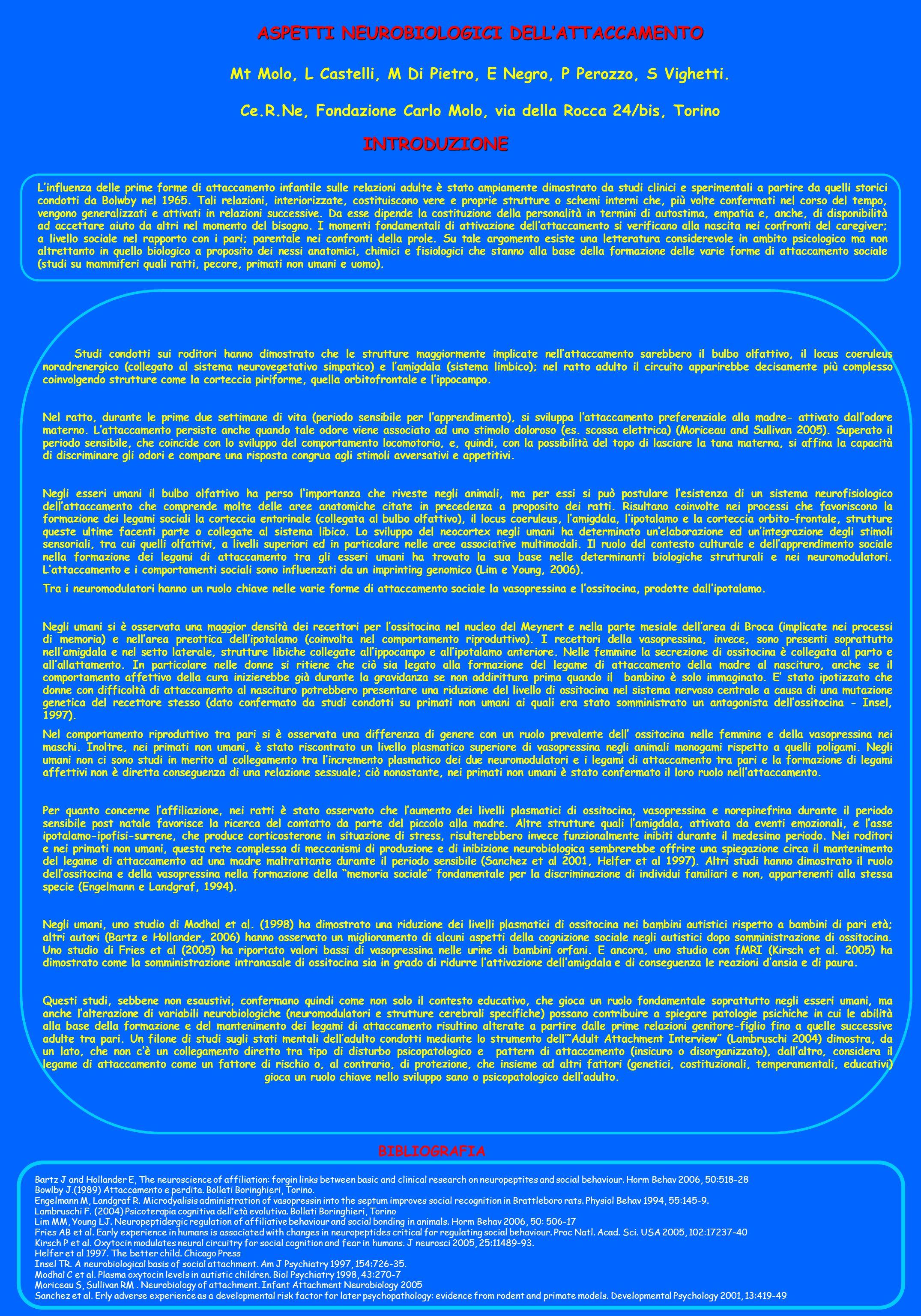 ASPETTI NEUROBIOLOGICI DELLATTACCAMENTO Mt Molo, L Castelli, M Di Pietro, E Negro, P Perozzo, S Vighetti. Ce.R.Ne, Fondazione Carlo Molo, via della Ro