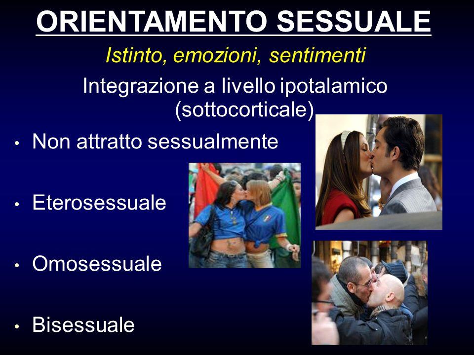 ORIENTAMENTO SESSUALE Istinto, emozioni, sentimenti Integrazione a livello ipotalamico (sottocorticale) Non attratto sessualmente Eterosessuale Omoses