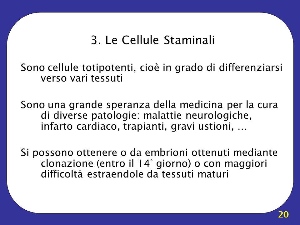 20 3. Le Cellule Staminali Sono cellule totipotenti, cioè in grado di differenziarsi verso vari tessuti Sono una grande speranza della medicina per la