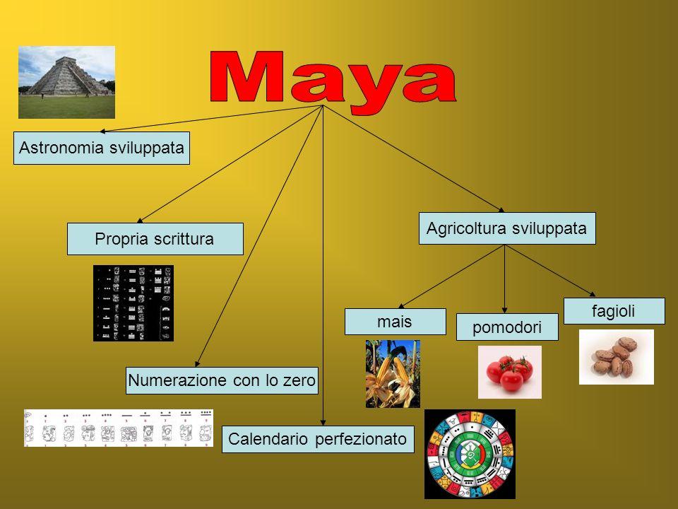 1- Le civiltà amerindie: Maya, Aztechi, Inca 2- Gli europei conquistano lAmerica e distruggono le civiltà amerindie 3- Le popolazioni dAmerica, dAsia