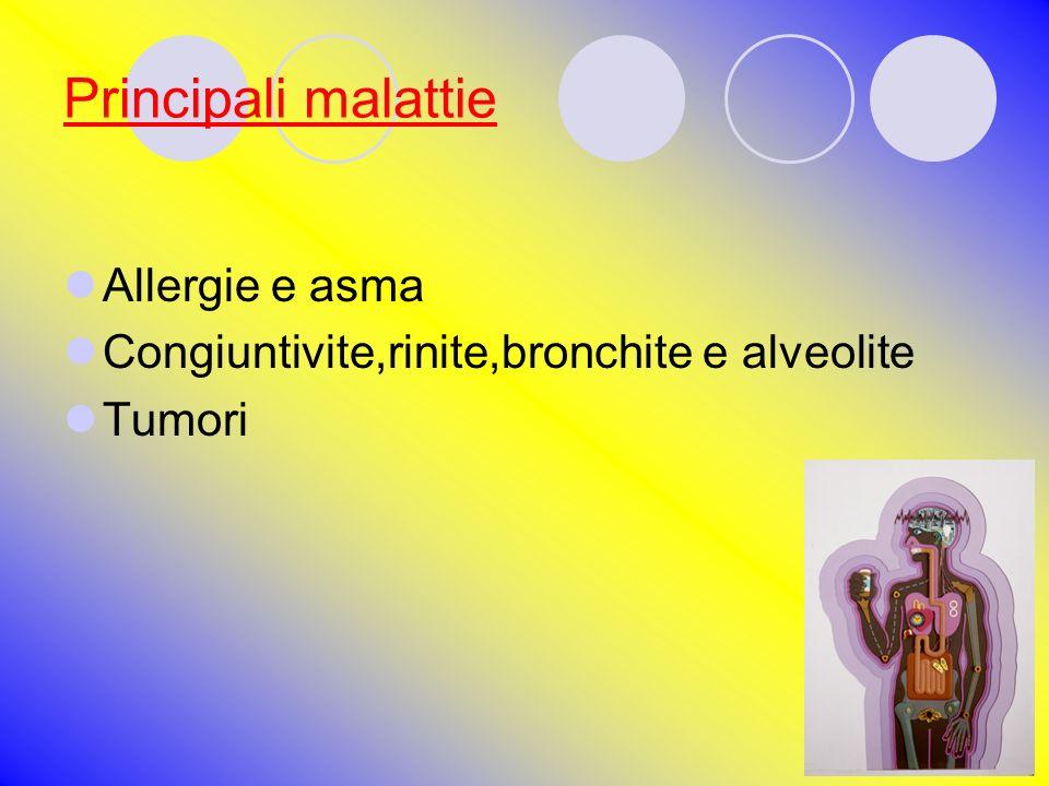 Principali malattie Allergie e asma Congiuntivite,rinite,bronchite e alveolite Tumori