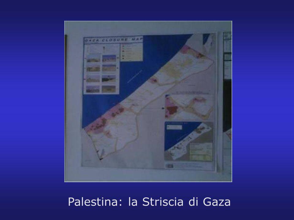 Palestina: la Striscia di Gaza