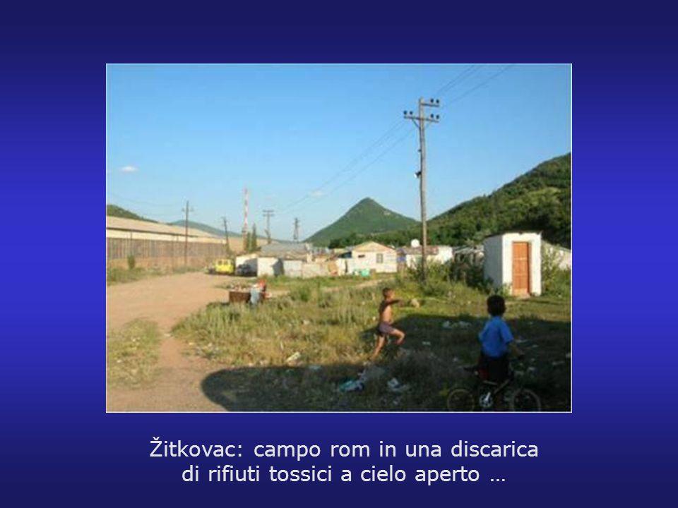 Žitkovac: campo rom in una discarica di rifiuti tossici a cielo aperto …