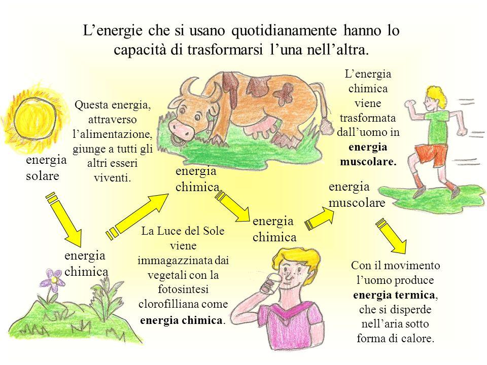 Luomo e tutti gli altri animali utilizzano i vegetali per vivere e crescere.