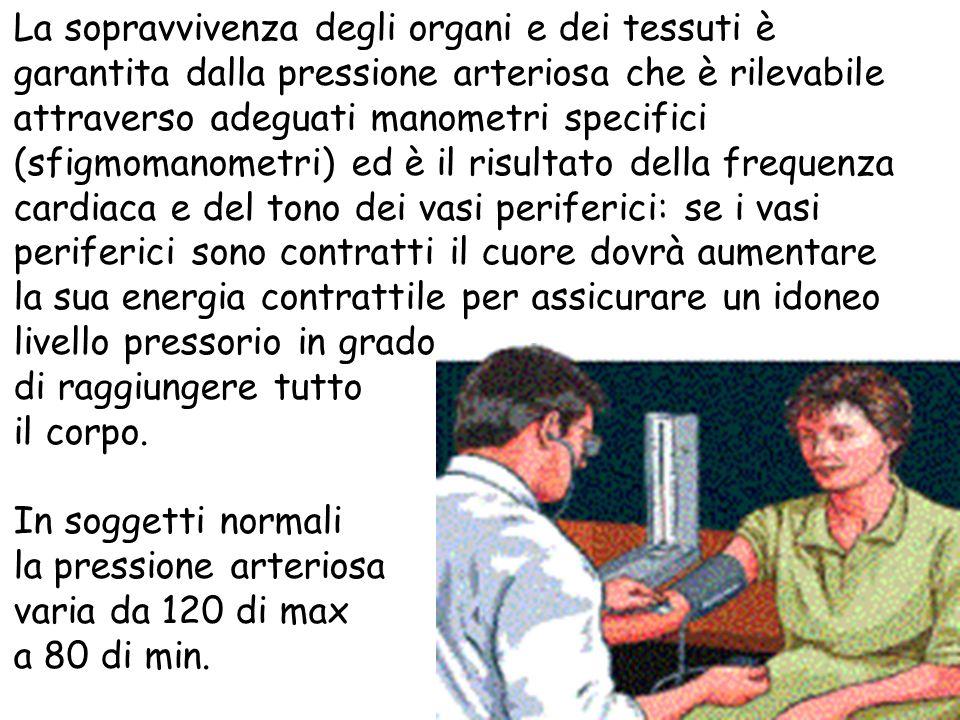La sopravvivenza degli organi e dei tessuti è garantita dalla pressione arteriosa che è rilevabile attraverso adeguati manometri specifici (sfigmomano